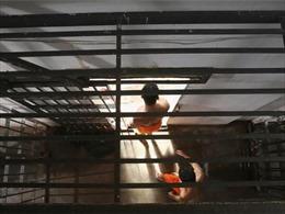 Ít nhất 57 tù nhân thiệt mạng do bạo loạn nhà tù ở Brazil