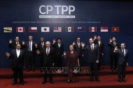 Sẽ trình Quốc hội Luật sửa đổi một số luật để thực thi Hiệp định CPTPP