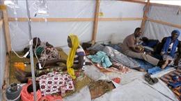 Dịch tả tái bùng phát tại Cameroon, 48 người thiệt mạng