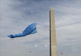 Ấn tượng Lễ hội thả diều mùa hoa anh đào tại Washington D.C