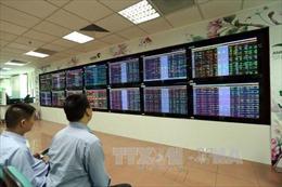 VN-Index duy trì đà tăng mạnh trong tháng 11