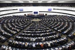Cử tri Ireland bắt đầu đi bỏ phiếu bầu cử Nghị viện châu Âu