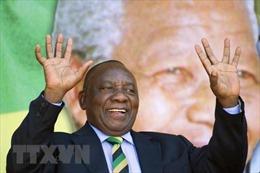 Cử tri Nam Phi ở ngoài nước bắt đầu bỏ phiếu bầu quốc hội, tổng thống