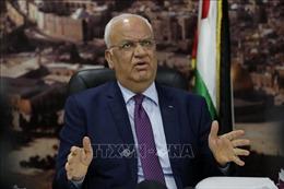 Palestine phản đối hội nghị của Mỹ liên quan tới kế hoạch hòa bình Trung Đông
