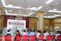 Agribank chi nhánh Đông Hải Phòng về đích sớm