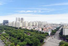 'Hòn đảo bảo tồn' giữa đô thị hiện đại