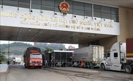 Kim ngạch xuất khẩu qua cửa khẩu Lào Cai sụt giảm do dịch COVID-19