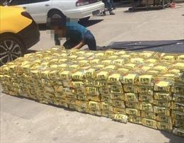 Báo động tội phạm buôn ma túy quy mô lớn