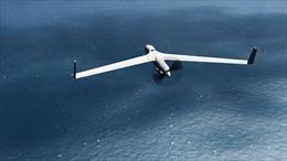 Năng lực trinh sát trên biển của trinh sát cơ UAV ScanEagle