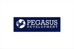 Pegasus Development AG (Thụy Sỹ) hợp tác với Công ty hóa chất NOUVO khai thác cơ hội giữa đại dịch COVID-19