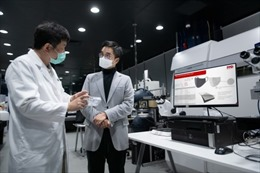New World Development đầu tư dây chuyền sản xuất 200.000 khẩu trang/ngày để ứng phó với dịch COVID -19