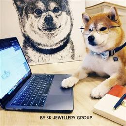 SK Jewellery Group cung cấp dịch vụ hỗ trợ khách hàng qua Zoom khi lựa chọn đồ trang sức