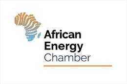 Guinea Xích đạo trao đổi với Phòng Năng lượng châu Phi về kế hoạch đầu tư, phát triển dầu khí