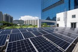 Sino Group công bố Sáng kiến Tầm nhìn bền vững năm 2030 với việc áp dụng Chiến lược 3R mới