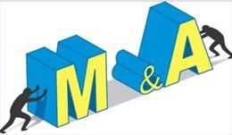 M&A cần sự cân bằng với nhu cầu doanh nghiệp trong nước