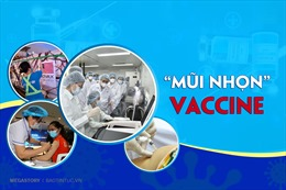 'Mũi nhọn' vaccine