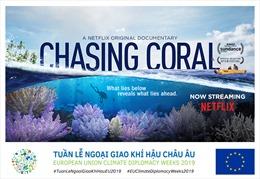 Công chiếu 'Truy tìm rạn san hô' – bộ phim tài liệu hấp dẫn về đại dương