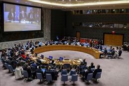 Nga đề nghị Hội đồng Bảo an họp về tình hình Syria