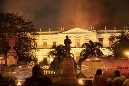 Cháy lớn trong đêm, Viện bảo tàng quốc gia Rio de Janeirotổn thất nặng