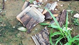 Động đất 3,8 độ richter tại Hà Tĩnh không ảnh hưởng đến cuộc sống đánh bắt xa bờ