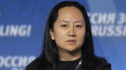 Canada bắt giữ Giám đốc Tài chính tập đoàn Huawei