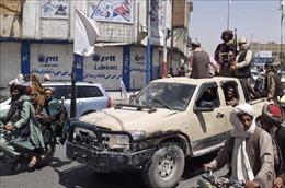Thế giới tuần qua: Afghanistan khủng hoảng nghiêm trọng; Dịch COVID-19 căng thẳng toàn cầu