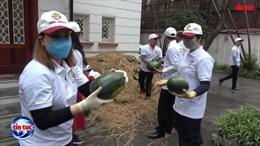 Đại sứ quán Qatar tại Việt Nam phát miễn phí 4 tấn dưa hấu 'giải cứu nông dân'