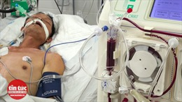 Bệnh viện Đa khoa Hoà Bình cứu sống ca bệnh Whitmore nguy kịch