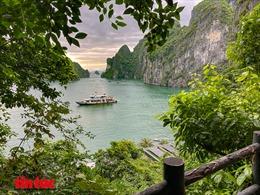 Quảng Ninhchủ động 'tiếp thị', thu hút khách du lịch nội địa