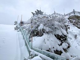 Tuyết rơi dày bao phủ Fansipan ngày 28 Tết