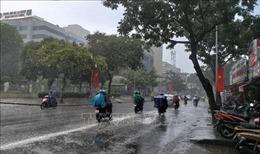 'Mưa vàng' góp phần giải nhiệt ngày đầu tiên trong kỳ nghỉ lễ ở TP Hồ Chí Minh