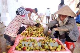 Đẩy mạnh hợp tác, tạo thuận lợi cho hàng nông sản Việt Nam và Trung Quốc