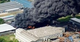 Cháy lớn tại nhà máy xử lý rác thải kim loại ở Nhật Bản