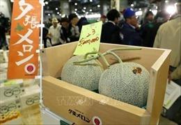 Cặp dưa hấu Nhật Bản có giá kỷ lục 45.500 USD