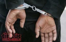 Bắt tạm giam 3 cán bộ Ban Quản lý Rừng phòng hộ ở Nghệ An