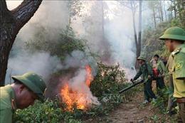 Đám cháy tại Nghi Xuân (Hà Tĩnh) bùng phát trở lại