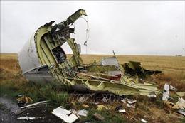 Vụ rơi máy bay MH17: Nghi can khẳng định không liên quan đến vụ việc