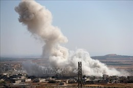 Chính phủ Syria chấp thuận có điều kiện lệnh ngừng bắn ở Idlib