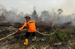 Hơn 39.000 người gặp vấn đề về hô hấp do khói mù tại Riau, Indonesia