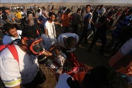 Ít nhất 63 người Palestine bị thương trong các cuộc đụng độ ở Dải Gaza