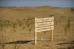 Sáng kiến bảo vệ môi trường của Trung Quốc nhận giải thưởng cao nhất của của Liên hợp quốc