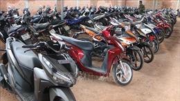 Hàng trăm xe máy cầm cố không chính chủ ở Bình Phước