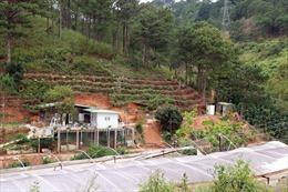 Lãnh đạo phường 10 Đà Lạt khẳng định không bảo kê xây nhà trái phép