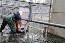 Vụ xử lý ô nhiễm sông Tô Lịch: JEBO gửi lờixin lỗi Chủ tịch UBND thành phố Hà Nội