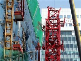 Cẩu tháp cao 30m đổ sập, 2 công nhân thiệt mạng