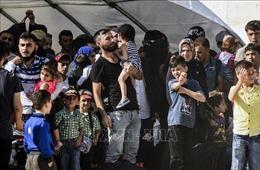 50.000 người di cư từ Idlib đang đổ vào Thổ Nhĩ Kỳ