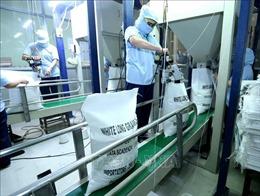 Tạm dừng xuất khẩu gạo từ ngày 24/3