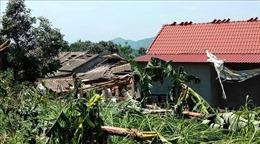 Mưa lớn kèm dông lốc Phú Thọ khiến hơn 1.000 ngôi nhà hư hại, hàng trăm ha lúa bị ngập úng