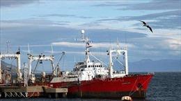 Hàng chục thủy thủ Argentinamắc COVID-19 sau 35 ngày lênh đênh trên biển