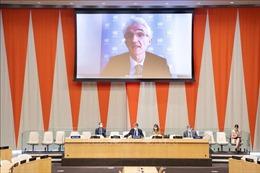 Hội đồng Bảo an quan ngại về tình hình vi phạm lệnh ngừng bắn ở Yemen